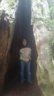 Marshall inside Red Cedar