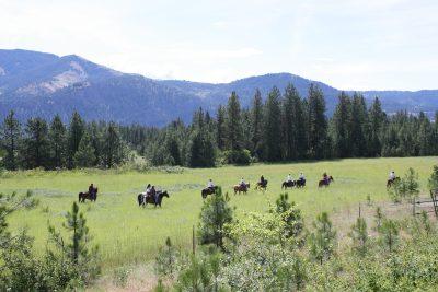 2016 Cowgirls