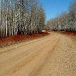 down-aspen-road-1536412-639x466